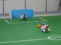 800px-Robocup 2005 Aibos.jpg